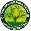 Cedar spring school Amritsar e1589810631785
